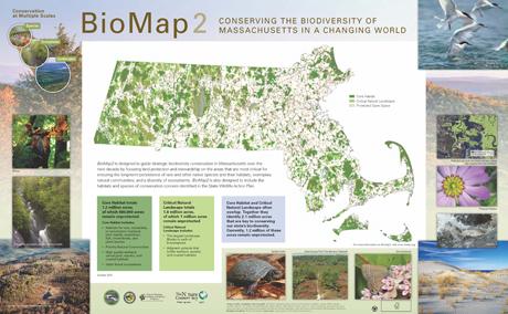 biomap-poster